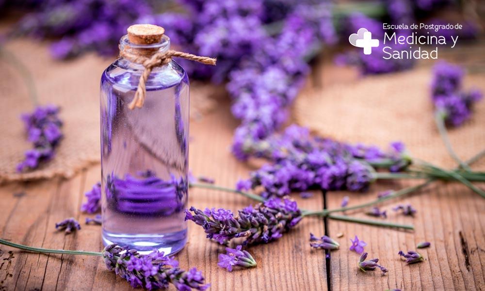 Descubre los múltiples usos y beneficios de los aceites esenciales natuales