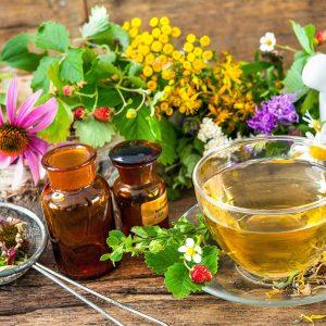 master-experto-en-homeopatia-master-experto-en-fitoterapia-master-experto-en-nutricion