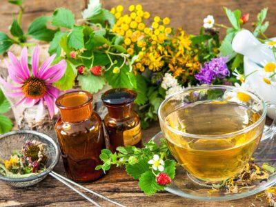 Estudiar el Máster en Fitoterapia, Homeopatía y Nutrición